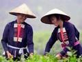El grupo étnico Cao Lan preserva su traje tradicional