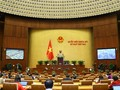 Национальное собрание обсуждает специальную политику развития 4 городов и провинций страны