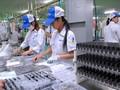 越南企业接触中国粤港澳大湾区市场的机会