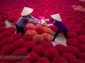 Incense-making Quang Phu Cau village