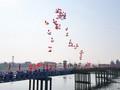 Membangun Provinsi Quang Tri Menjadi Simbol dari Nilai-Nilai Perdamaian