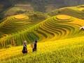 Beberapa Lagu tentang Kampung Halaman dan Tanah Air Vietnam