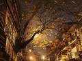 Perkenalan Beberapa Lagu tentang Kota Hanoi
