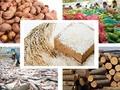 Viele positive Signale für die vietnamesische Wirtschaft