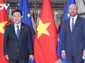 베트남, EU 및 EP와 EVFATA 효과적 이행 협력  