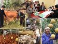 实施消饥减贫国家目标计划 保障人权
