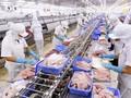 Vietnam: des perspectives économiques positives à moyen et à long terme