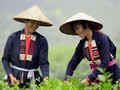 Les costumes Cao Lan