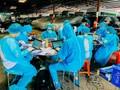HCM市での新型コロナ予防対策に参加している青年ボランティア