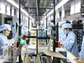 クアンニン省  新型コロナ禍で工業生産を安定化