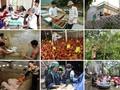 持続可能な成長の中心的任務である貧困解消事業