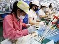 印度《经济时报》:越南正崛起成为地区的经济强国
