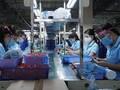 Flexible Anpassung an Epidemie, Wiederherstellung der Produktion