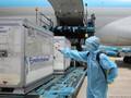 Thêm 9 triệu liều vaccine phòng Covid-19 về Việt Nam trong tháng 7