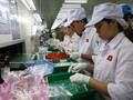 Tăng trưởng kinh tế của Việt Nam dự báo sẽ phục hồi trong quý IV