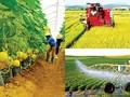 Hội nghị toàn thể Đối tác Phát triển Nông nghiệp Bền vững Việt Nam