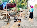 Và Thi Kia sort de la pauvreté