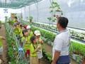 หนุ่มชาวก่าเมาเสร้างฐานะที่มั่นคงผ่านการทำธุรกิจสตาร์ทอัพด้านเกษตรปลอดสารพิษ