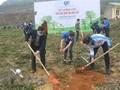 Jugendverband startet Monat zum Baumanpflanzen 2021