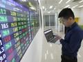 Брокерские компании Вьетнама нацелены на быстрый рост