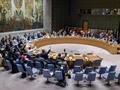 Việt Nam đóng góp hiệu quả vào công việc của Hội đồng Bảo an Liên Hợp Quốc