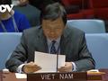 Việt Nam kêu gọi bảo vệ an toàn cho nhân viên nhân đạo trong xung đột vũ trang