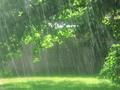 รายการเพลงเกี่ยวกับสายฝน
