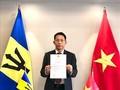 Vietnam y Barbados: una cooperación prometedora