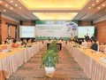 Vietnam shifts to renewable energy for sustainability