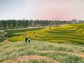 Hanoi: deux nouveaux sites touristiques à Dan Phuong