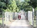 Chiềng Khương - Xã biên giới đổi thay từ xây dựng nông thôn mới