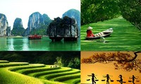 """Concurso """"¿Qué conoce Usted sobre Vietnam?"""" 2020 contribuye a promover la imagen de Vietnam y su gente"""