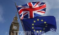 Inggris dan Uni Eropa memulai putaran ke-7 perundingan tentang hubungan bilateral pasca Brexit