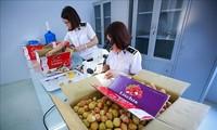 Vietnam merupakan salah satu mitra ekonomi yang ideal dari Australia