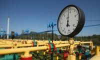 UEA dan Israel membahas kerja sama tentang ekspor gas ke Eropa