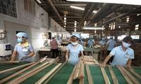 Ranah pasar ekspor hasil hutan masih sangat besar