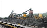 PM Mengesahkan Proyek Pengembangan Pasar Energi yang Kompetitif hingga Tahun 2030