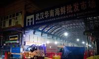 Rombongan Pakar WHO Datang di Pasar Hasil Laut di Kota Wuhan, Tiongkok