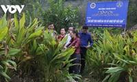 Perubahan Kuat dari Pola Koperasi Tipe Baru di Provinsi Bac Kan