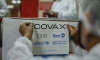 Rusia Nyatakan Kesediaannya untuk Berpartisipasi pada Fasilitas COVAX