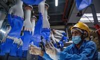 ASEAN+3 Berharap Ekonomi Pulih Cepat Berkat Adanya Vaksin Covid-19