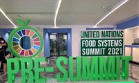 PBB Imbau Perhatian Komunitas Internasional tentang Kerawanan Pangan