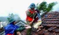 Vietnam construye un marco de acción para la aliviar las secuelas de los desastres naturales
