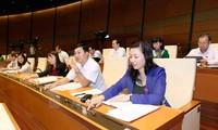 Sistema legal de Vietnam cumple con estándares internacionales en materia de religión y creencias