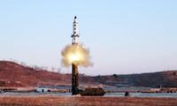 Cuestionan medidas punitivas para aliviar tensión en península coreana