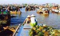 Ciudad de Can Tho fomenta la descontaminación fluvial y marítima