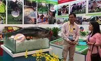 Vietnam fortalece aplicación de avances tecnológicos en la producción agrícola