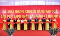Primer ministro de Vietnam ensalza el modelo de producción agrícola de Doveco