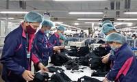 Vietnam promueve el desarrollo del mercado laboral