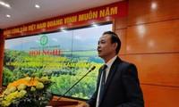 Vietnam determinado a aumentar exportaciones silvícolas en 2020